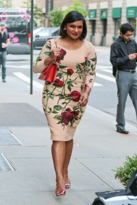 Mindy-Kaling-in-dolce-gabbana-rose-print-Floral-Dress